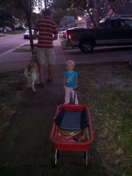 walking with the wagon